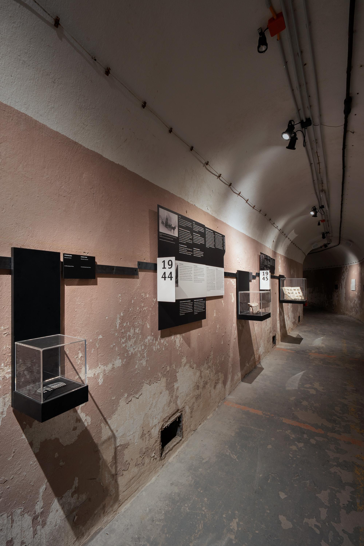 Dauerausstellung, Tiere im Krieg, Bunkeranlage, unterirdisch, Exibition, Tiere, Zweiter Weltkrieg, Kalter Krieg, Ausstellungskonzeption